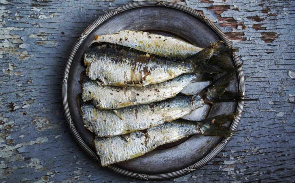vette vis en zeevruchten bevatten veel omega-3